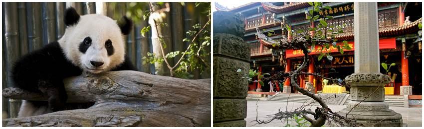 kina-äventyrsresa-changdu