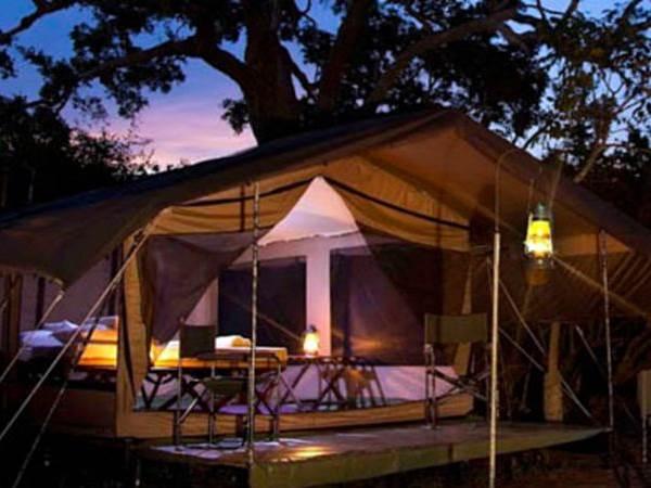 Wild Trails - Camping i Udawalawe