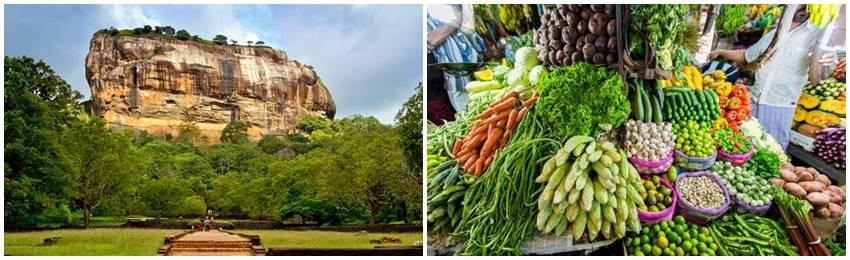 kulinarisk-resa-srilanka