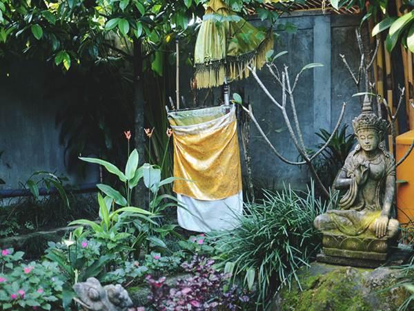 Boendet i Ubud - Trädgård