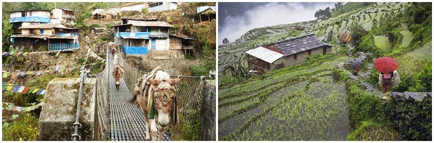 aktivt-resande-nepal-trekking