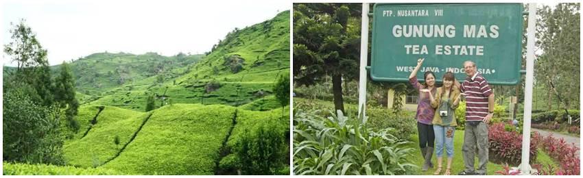 aventyrsresa-indonesien-java-gunung-mas