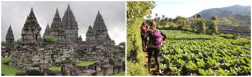 billiga-gruppresor-till-indonesien-trekking