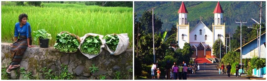 billiga-resor-till-indonesien-flores