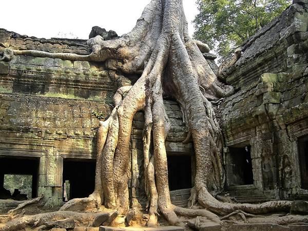 Angkor i Kambodja