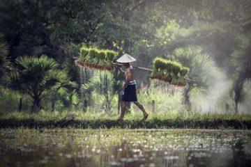 rundresa-vietnam-kambodja