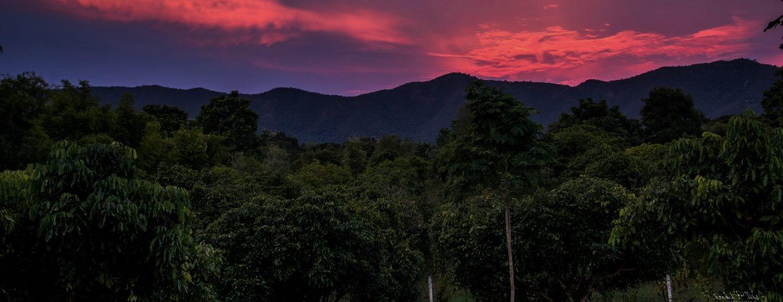 Äventyrsresa: Lär känna norra Thailand [TAC+]