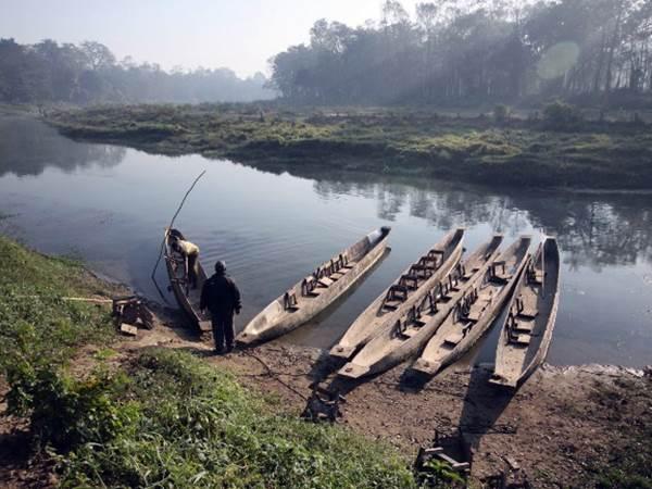 Raptifloden, Chitwan