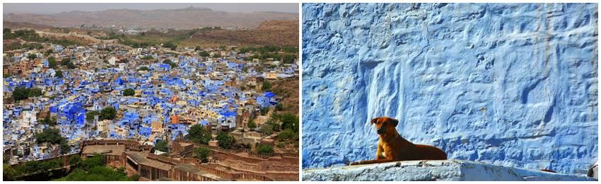 rundresa-indien-jodhpur