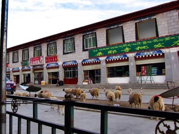 Samye Hotel i Samye