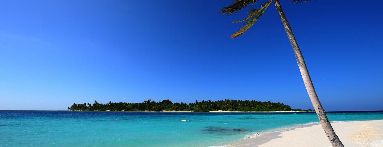 Budgetresa: Strand, hav & kultur på Sri Lanka