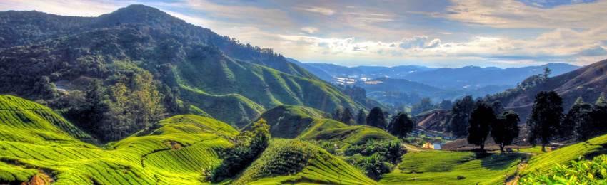 rundresa-malaysia-cameron-highlands