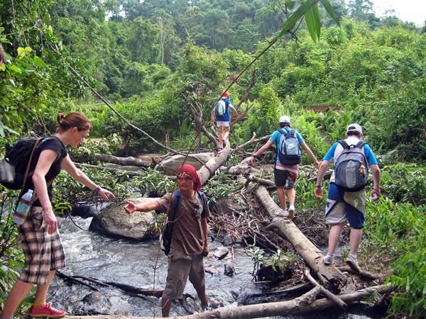 Trekka i Chiang Mai