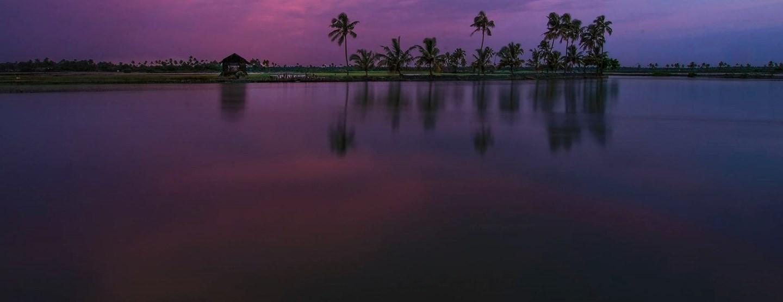 Södra Indien: Aktiv rundresa från Kerala till Goa