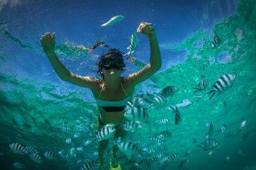 billig-snorkling-thailand