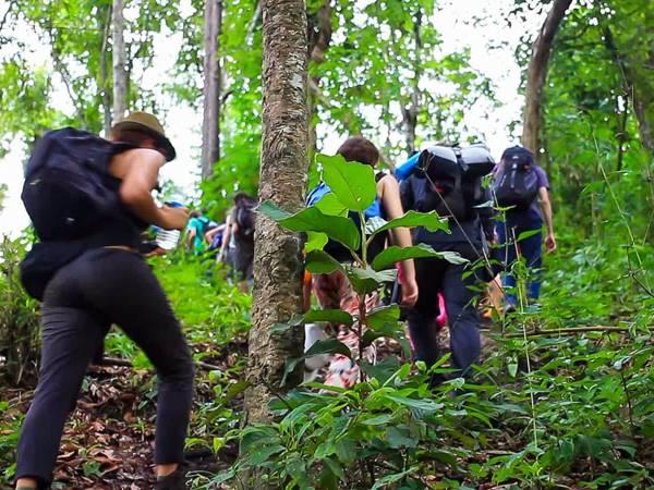 Trekking i norra Thailand