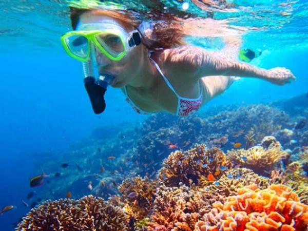 Snorkling i Bali Barat Nationalpark